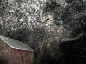 KathyP snow cloud orbs