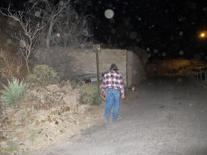 Orbs go walking with dog