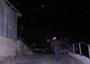 cold orbs walk dog Cheyenne MacMasters