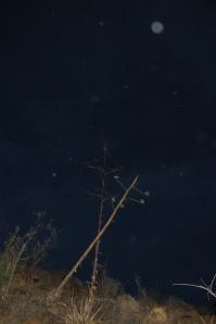 Stormy Night Orbs Cheyenne MacMasters 1a