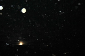 full moon orbs photographed by Cheyenne MacMasters