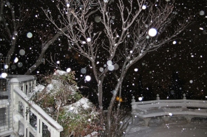 blizzard Orbs photo by Cheyenne MacMasters